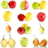 inställda olika pears för äpplen Royaltyfria Foton
