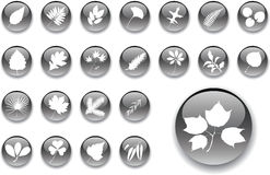inställda stora leaves för knappar 1 Arkivbilder
