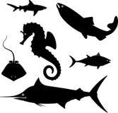 inställda symboler för fisk 11c Arkivbild