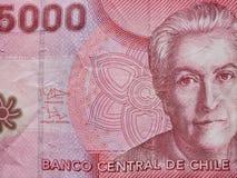 inställning till den chilenska sedeln av 5000 pesos, bakgrund och textur