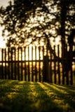 inställningssol bak ett staket royaltyfri foto