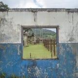 Instagram Imagen de archivo libre de regalías