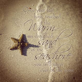 Instagram of beautiful starfish on beach with quote Stock Photos