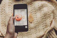 Instagram blogging concept. hand holding phone and taking photo. Of pumpkin and leaf on warm sweater,rustic background top view. halloween or thanksgiving stock image