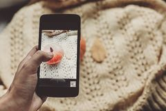 Instagram blogging concept. hand holding phone and taking photo. Of pumpkin and leaf on warm sweater,rustic background top view. halloween or thanksgiving stock photography