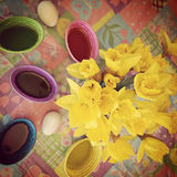Instagram of daffodils and Easter Egg dye Royalty Free Stock Photos