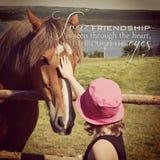 Instagram de la chica joven que acaricia el caballo con cita inspirada Fotografía de archivo