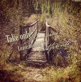 Instagram hermoso del puente de madera en el bosque con cita Imagen de archivo libre de regalías