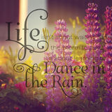 Instagram of lupins with inspirational quote Royalty Free Stock Photo