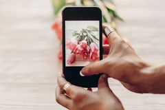 Instagram photographer blogging workshop concept. hand holding p royalty free stock photography