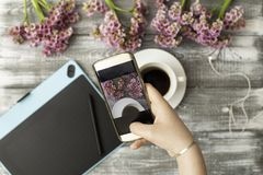 Instagram photographer blogging workshop concept, hand holding phone and taking photo of stylish flowers, cup of coffee royalty free stock photography