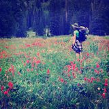 Instagram Style Girl Backpacking with Wildflowers Taking Photogr Stock Image