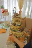 A instalação da montagem do bolo de casamento do nude no coto, bolo bonito com cones, grama Fotografia de Stock Royalty Free