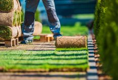 A instalação do gramado da grama Fotografia de Stock Royalty Free