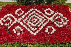 A instalação dos cravos em um festival da flor em Baku Fotos de Stock