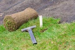 Instalação profissional do relvado natural da grama Imagem de Stock