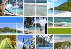 A instalação tropical. Seychelles. Fotografia de Stock