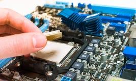 Instalación de la CPU en la placa madre Imagenes de archivo