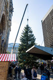 Instalación de un árbol de navidad Fotos de archivo libres de regalías