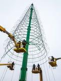 Instalación de un árbol de navidad Imágenes de archivo libres de regalías
