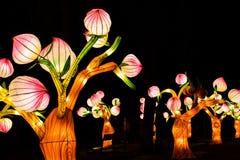 Instalación del arte de las flores que brilla intensamente en Zagreb, Croacia foto de archivo libre de regalías