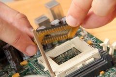 Instalación del procesador del ordenador Imagen de archivo