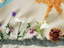 Instalacja na temacie lato, farba, błękitna glina, kwitnie Zdjęcie Royalty Free