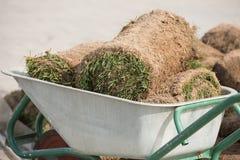 Instalador profesional natural del césped de la hierba Céspedes de Installing Natural Grass del jardinero que crean el campo herm Fotos de archivo libres de regalías