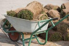 Instalador profesional natural del césped de la hierba Céspedes de Installing Natural Grass del jardinero que crean el campo herm Imagenes de archivo