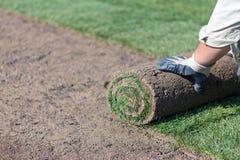 Instalando o gramado novo imagem de stock