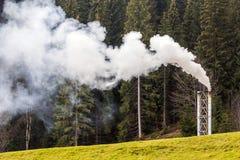 Instale tubos con humo blanco grueso en bosque del pino fotos de archivo