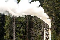 Instale tubos con humo blanco grueso en bosque del pino imagenes de archivo