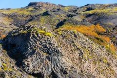 Instale tubos la roca formada en el viaje de Glymur en Islandia foto de archivo libre de regalías