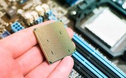 Installando il CPU nella scheda madre Immagine Stock Libera da Diritti