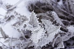 Installatie in de winter Voor achtergrond stock foto's