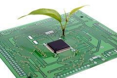 Installatie en microchip Nanotechnologie, micro-elektronica, ecologieconceptie Stock Afbeelding