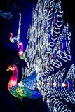 Installatie van kleurrijke pauwlantaarns op Chiswick-Algemene Vergadering en Stock Foto