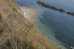 Installaties, blauwe overzees en mensen die - Durdle-Deur, Dorset, Engeland zwemmen Royalty-vrije Stock Foto's