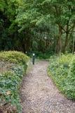 Installaties, bomen en voetpad voor het lopen in een park, gezonde levensstijl Stock Afbeeldingen