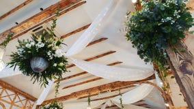 Installaties die van plafond hangen stock footage