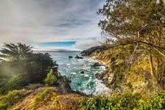 Installaties door de Grote rotsachtige kust van Sur royalty-vrije stock foto