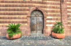 Installaties door een houten deur stock foto's
