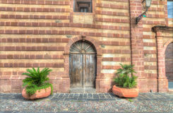 Installaties door een houten deur royalty-vrije stock afbeelding