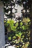 Installaties en bloemen in de tuin royalty-vrije stock foto