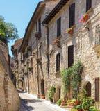 Installaties en bloemen in potten op smalle straten van het oude dorp van Spello, Umbrië, Italië Royalty-vrije Stock Fotografie