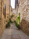 Installaties en bloemen in potten op smalle straten van het oude dorp van Spello, Umbrië, Italië Stock Foto