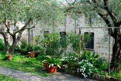 Installaties en bloemen van een park in ArquàPetrarca Veneto Italië Stock Foto
