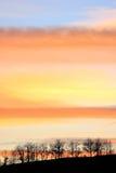 Bomen bij zonsondergang Royalty-vrije Stock Foto