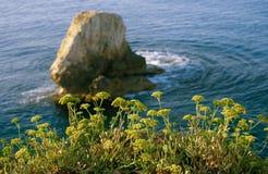Installaties op zeekust tegen de achtergrond van klippen royalty-vrije stock foto's