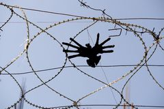 Installation bird-hands in barbed wire, on the theme of borders, migration and refugees. royalty free stock images